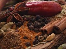 Énigme de l'arome des épices fraîches photos libres de droits