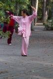 Épée de Tai Chi de matin Photo libre de droits