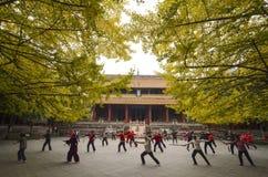 Épée de Taiji de jeu de personnes dans un temple Images libres de droits