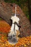 Épée près de l'arbre Photos libres de droits