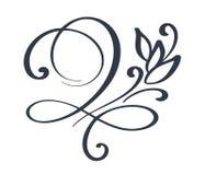 Épanouissez-vous la décoration fleurie de remous pour le style aigu de calligraphie d'encre de stylo Flourishes de stylo de canne illustration libre de droits