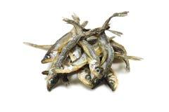 Éperlan d'arc-en-ciel sec de poissons Photo stock