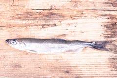 Éperlan de poisson cru image sepian de vintage stylisé Photo stock
