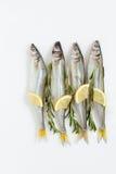 Éperlan de poissons de mer mariné avec le romarin et le citron Photo libre de droits