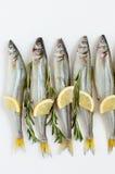 Éperlan de poissons de mer mariné avec le romarin et le citron Photo stock