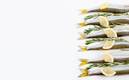 Éperlan de poissons de mer mariné avec le romarin et le citron sur un petit morceau Photo libre de droits
