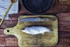 Éperlan gelé de poissons sur le panneau de cuisine Photographie stock libre de droits