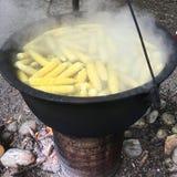 Épi de maïs bouilli Photos libres de droits