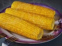 Épi de maïs chaud délicieux jaune Photos libres de droits