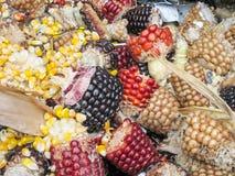 Épi de maïs jeté Photographie stock
