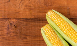 Épi de maïs mûr Images libres de droits