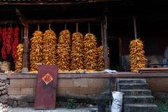Épi de maïs stocké pour sécher dans la cour image stock