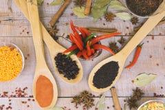 Épice avec le poivron rouge sur un fond en bois avec différentes poussières abrasives Photos stock