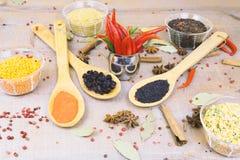 Épice avec le poivron rouge sur un fond en bois avec différentes poussières abrasives Images libres de droits