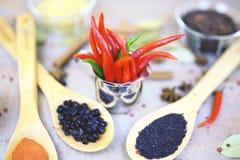 Épice avec le poivron rouge sur un fond en bois avec différentes poussières abrasives Images stock