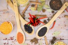 Épice avec le poivron rouge sur un fond en bois avec différentes poussières abrasives Image libre de droits