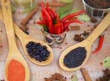 Épice avec le poivron rouge sur un fond en bois avec différentes poussières abrasives Photo stock