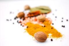 Épice de mélange Photos stock