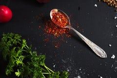 Épice de rouge de cuillère à café Images stock