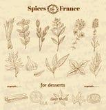 Épice en cuisine française Herbes utilisées dans les Frances pour illustration stock