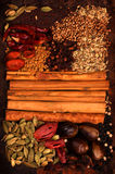Épice indienne Photos stock