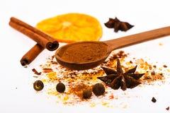Épice le concept de kit Cuillère avec les épices, l'orange sèche, le bâton de cannelle, le cardamome et la noix de muscade sur le Images libres de droits