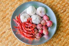 Épice les herbes thaïlandaises Images stock