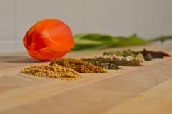 Épices à la maison photos libres de droits