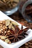 Épices, anis d'étoile, cardamome et coriandre. Image libre de droits