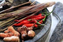 Épices asiatiques Photos libres de droits
