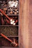 Épices authentiques de Chinois de collection Photo libre de droits