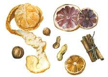 Épices avec la mandarine et l'orange illustration stock