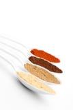 Épices colorées image libre de droits