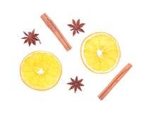 Épices d'hiver et composition orange d'isolement sur le blanc Photographie stock