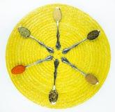 Épices dans des cuillères Image libre de droits