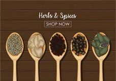 Épices dans des cuillères en bois au-dessus de fond en bois Photographie stock