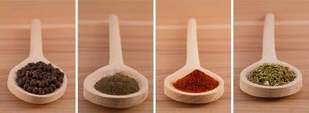 Épices dans des cuillères en bois (poivre, origan, paprika) Photos stock