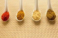 Épices dans des cuillères sur la table Photos stock