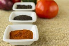 Épices dans des récipients avec des légumes à l'arrière-plan Image stock