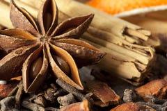 Épices de chauffage Photo stock