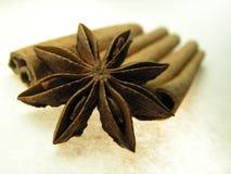 Épices de graine et d'écorce d'étoile Photographie stock