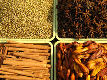 Épices de l'Inde Photographie stock libre de droits