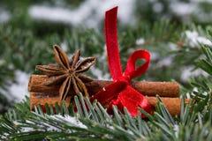 Épices de Noël image stock