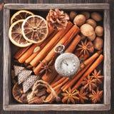 Épices de Noël, montre de vintage sur une chaîneet des jouets de Noël Photographie stock