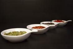 Épices de nourriture Photographie stock libre de droits
