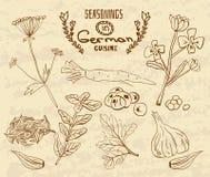 Épices en cuisine allemande Les herbes réglées dans rétro illustration de vecteur