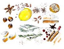 Épices et agrume de Noël Croquis d'aquarelle illustration stock