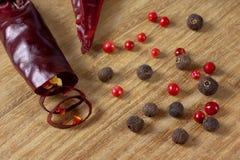Épices et fin d'un rouge ardent de poivre vers le haut Photographie stock libre de droits