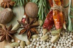 Épices et herbes Photographie stock