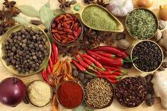 Épices et herbes Images stock